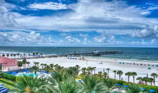 Florida Electrical License Renewal